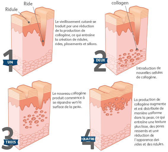 the recovery effects of collagen on the skin